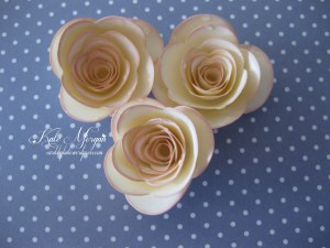 Very Vanilla with Blushing Bride sponging