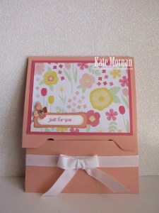 Gift Card Holder with EPB