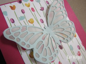 Butterfly Painted Blooms