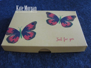Stampin Up Watercolour Wings Gift Box of Cards