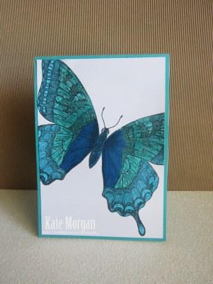Swallowtail card #stampinup