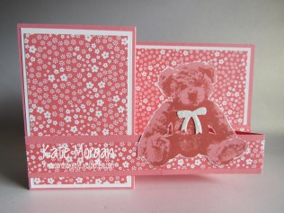 Baby Bear, Double Z fold Card #stampinup Cards by Kate @cardsbykate @cardsbykatemorgan DIY