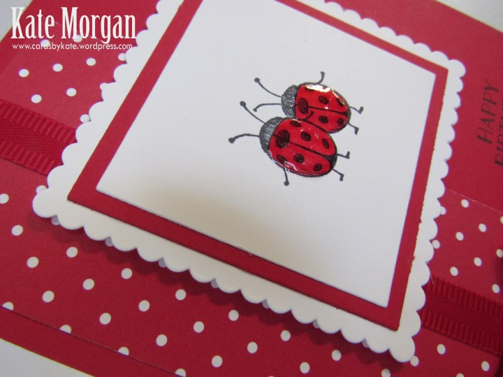 Love You Lots, Ladybugs, Feminine Birthday Card, #stampinup, @cardsbykate