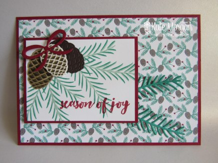 Christmas Pines, Presents & Pinecones DSP #stampinup Holiday Catalogue 2016 DIY @cardsbykate