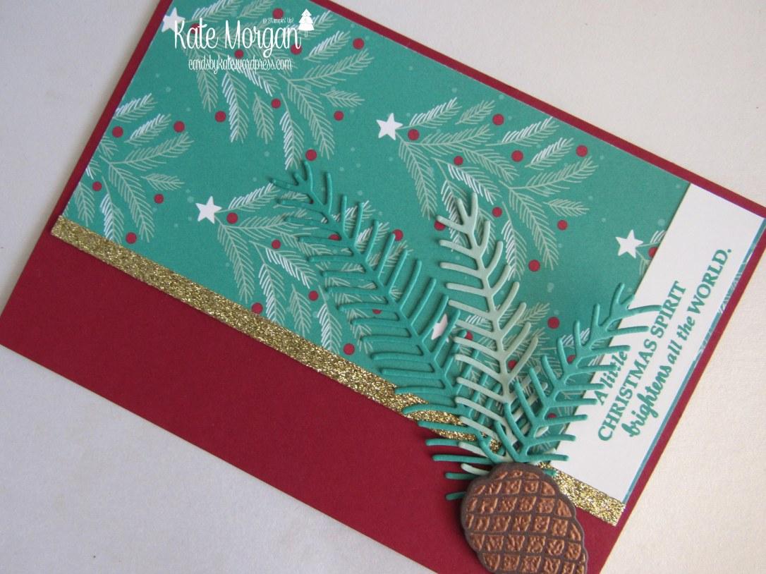 presents-pinecones-dsp-christmas-pines-diy-handmade-card-holiday-catalogue-2016-cards-by-kate-stampinup-cardsbykatemorgan