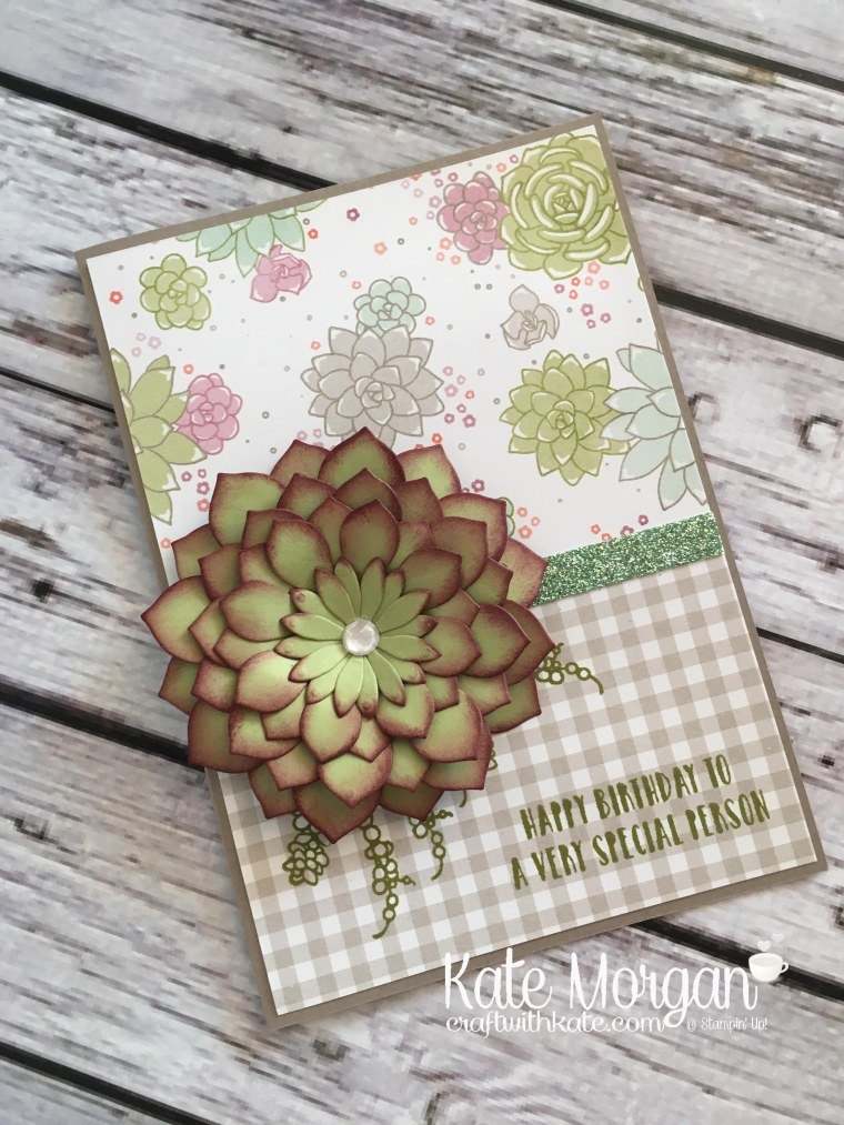 Succulent Garden Suite by Kate Morgan, Independent Stampin' Up! Demonstrator Australia. #occasions2017 DIY 3D Glimmer 1