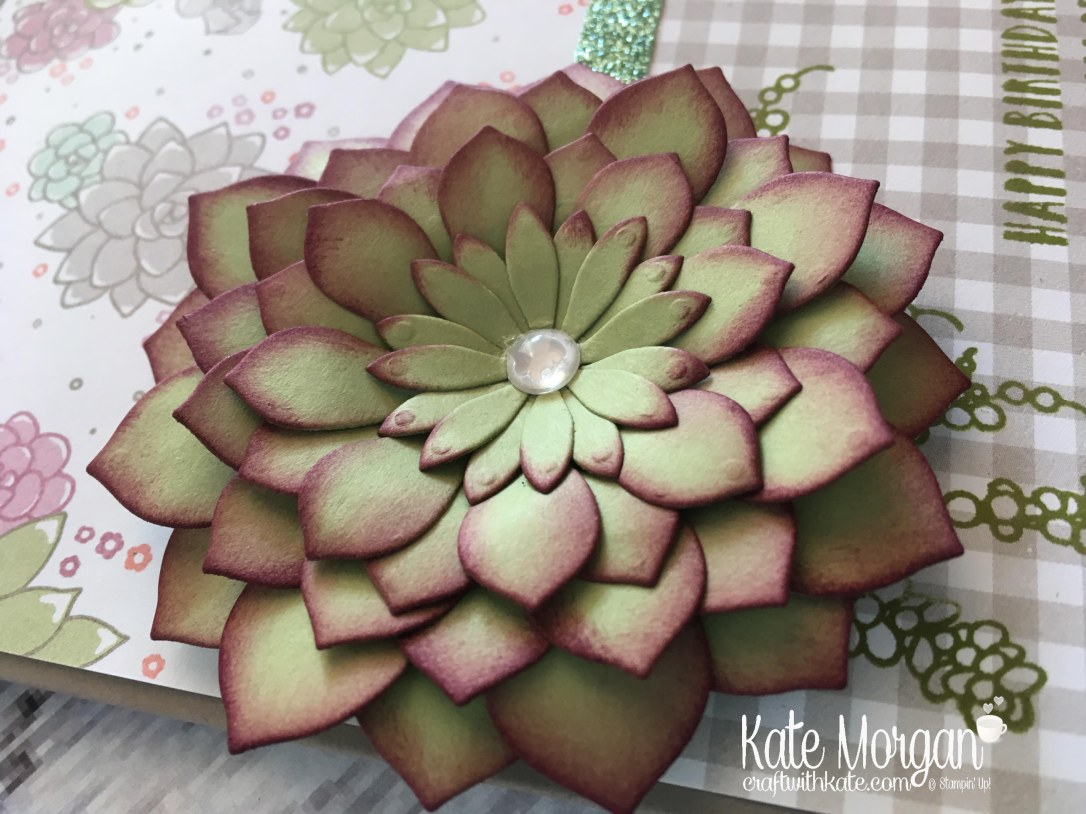 Succulent Garden Suite by Kate Morgan, Independent Stampin' Up! Demonstrator Australia. #occasions2017 DIY 3D Glimmer sponged