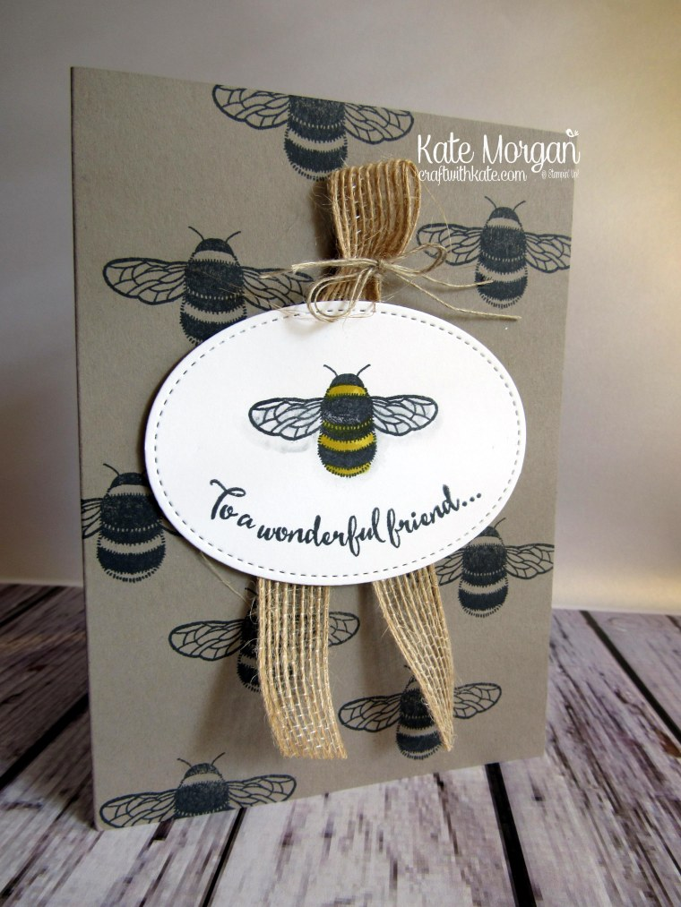 To a wonderful friend using Stampin Ups Dragonfly Dreams by Kate Morgan, Stampin Up demonstrator Melbourne #Occasions2017