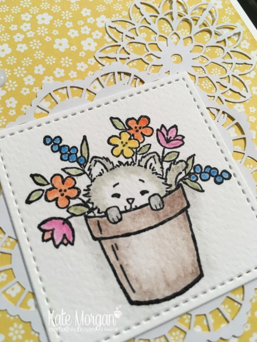 Pretty Kitty by Kate Morgan, Independent Stampin Up demonstrator, Australia Classes in Rowville