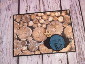 Wood Textures DSP, Dapper Denim Baker's Twine, Pretty Label punch, Touches of Nature Elements, Eclectic Shaped Paper Clips by Kate Morgan, Independent Stampin Up Demonstrator Australia