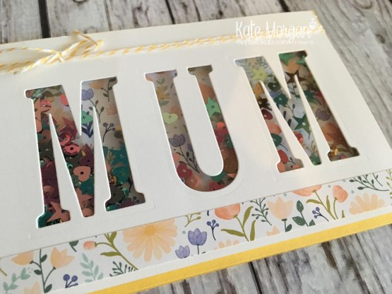 Shaker card for Mother's Day using Stampin Ups Delightful Daisy DSP & Large Letter Framelits by Kate Morgan, Independent SU Demonstrator, Rowville side