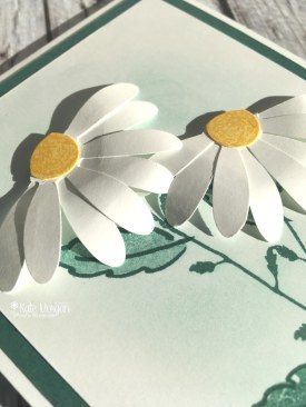 Daisy Delight by Kate Morgan, Independent Stampin' Up! Demostrator, Australia 3D