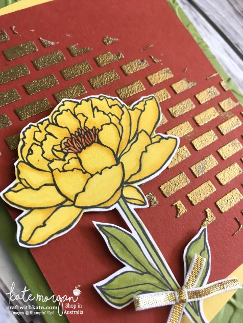 Blog Hop with Stampin Up Embossing Paste & You've Got This by Kate Morgan, Independent Demonstrator, Australia DIY Closeup