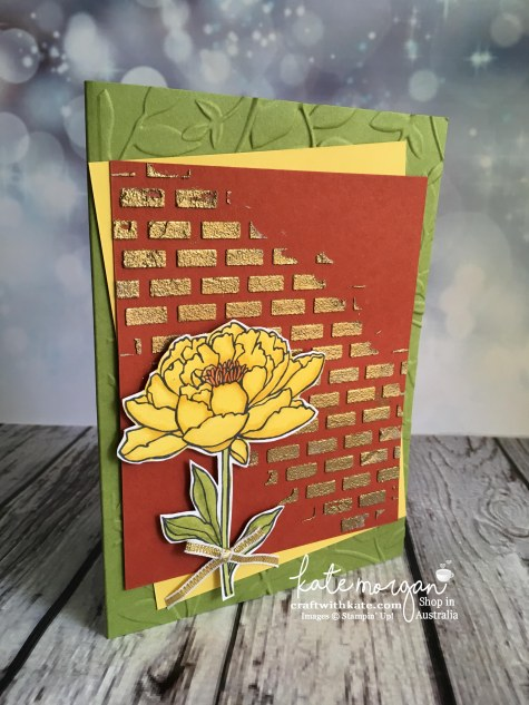 Blog Hop with Stampin Ups Embossing Paste & You've Got This by Kate Morgan, Independent Demonstrator, Australia DIY