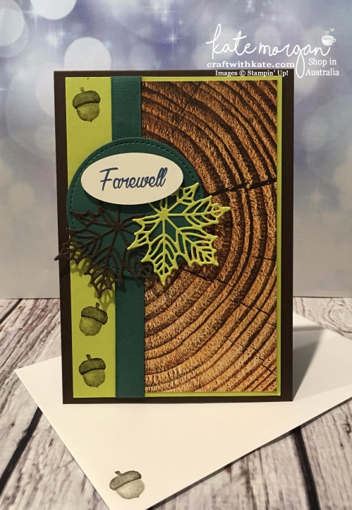 Seasonal Layers thinlits & Wood Textures DSP Masculine Farewell card