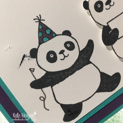 Birthday card using Stampin Ups Party Pandas & Special Celebrations, Saleabration 2018 by Kate Morgan, Independent Demonstrator, Australia. Oops