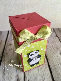 Impossible Gift Box using Stampin Up Party Pandas by Kate Morgan, Independent Demonstrator, Australia 3D DIY closed