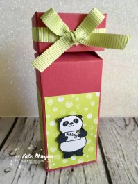 Impossible Gift Box using Stampin Up Party Pandas by Kate Morgan, Independent Demonstrator, Australia 3D DIY half open