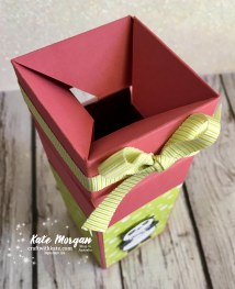 Impossible Gift Box using Stampin Up Party Pandas by Kate Morgan, Independent Demonstrator, Australia 3D DIY open