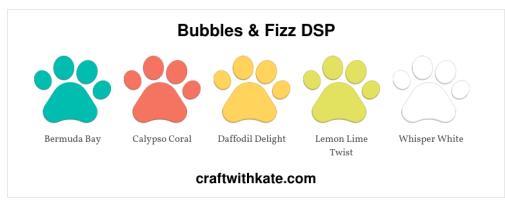 Bubbles & Fizz DSP.jpg