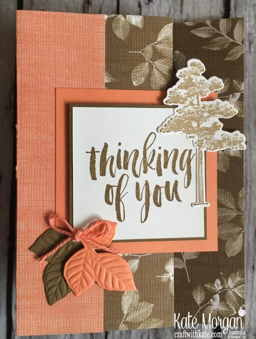 Fun Fold Nature's Poem DSP, Rooted in Nature Stampin Up Thinking of You Card by Kate Morgan, Australia 2018