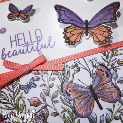 Butterfly Gala & Gingham Gala DSP Stampin Up Occasions Saleabration by Kate Morgan, Australia, 2019.