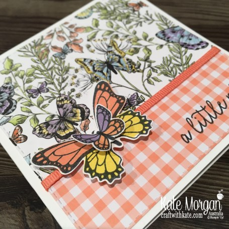 Butterfly Gala, Gingham Gala DSP Stampin Up Occasions Saleabration Square card by Kate Morgan, Australia 2019.