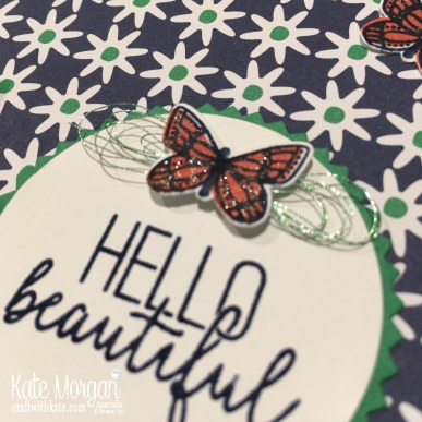 butterfly gala & happiness blooms stampin up occasions by kate morgan australia 2019.