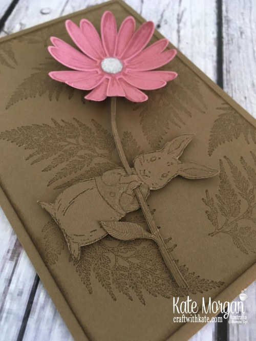 Daisy Lane Fable Friends Stampin Up Australia Kate Morgan 2019, Colour Creations Blog Hop.JPG