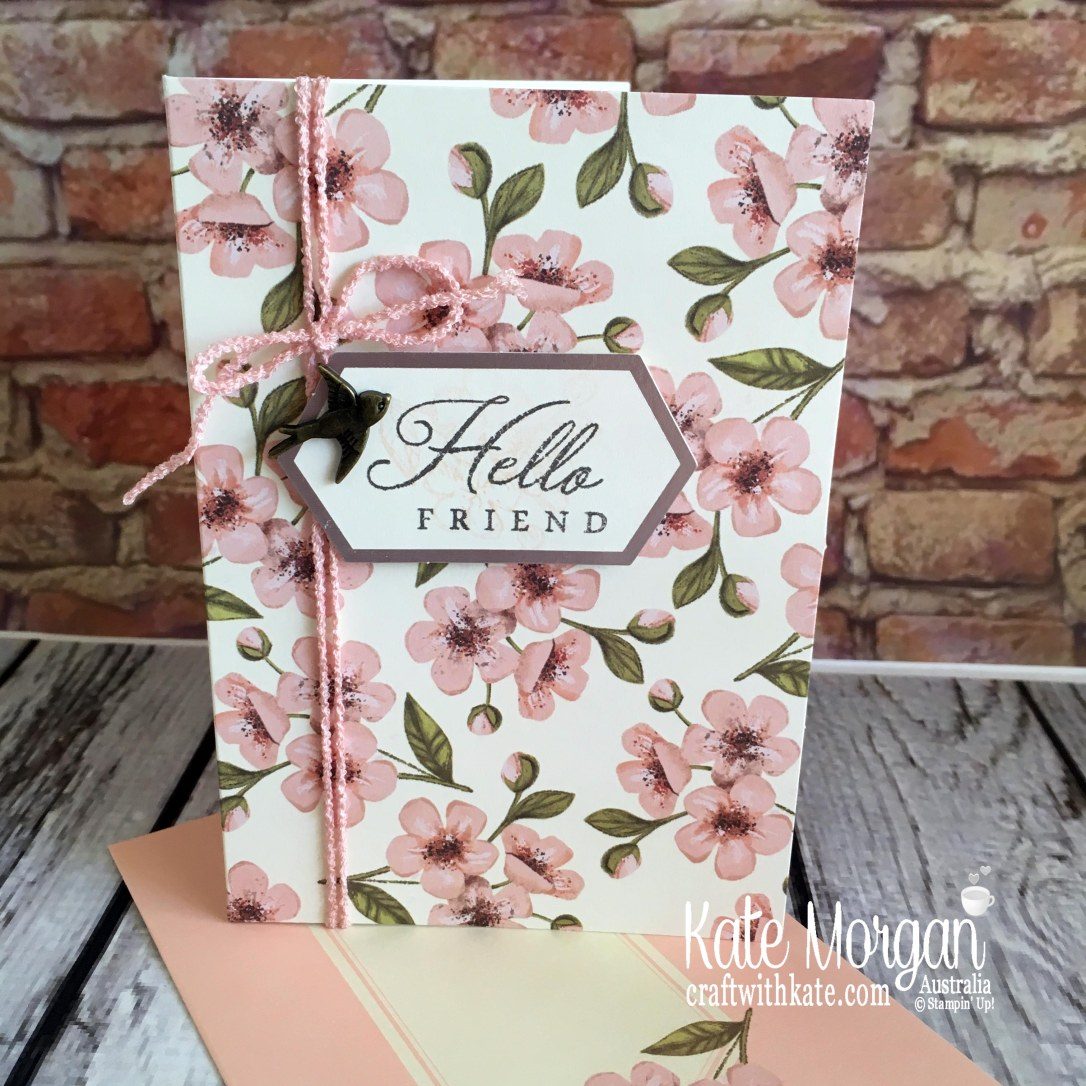 Paper Pumpkin Hugs from Shelli May 2019 by Kate Morgan Stampin Up Australia.