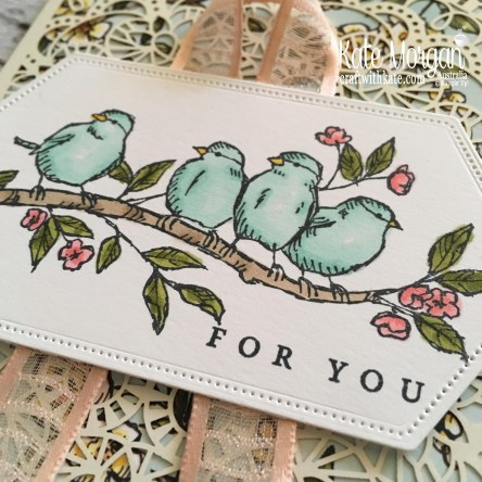 Bird Ballad Suite & Laser Cut Tin Stampin Up Australia by Kate Morgan.