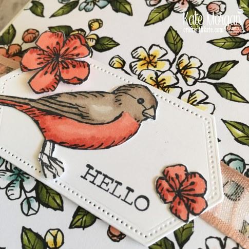 Free as a Bird Bundle using Stampin Up Bird Ballad DSP by Kate Morgan, Australia, 2019 Handmade Fancy Fold Pop up Birthday Card.
