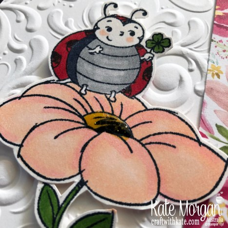 Best Dressed DSP & Little Ladybug Hostess Stampin Up Mini 2020 by Kate Morgan, Australia m