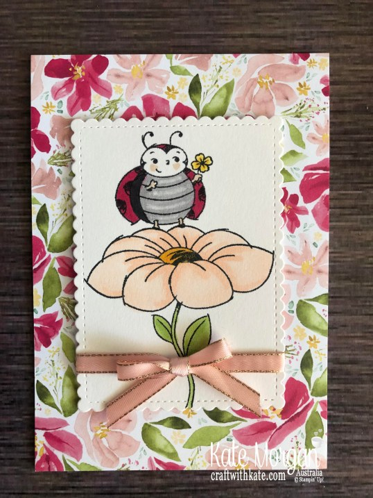 Best Dressed DSP & Little Ladybug Stampin Up Mini 2020 by Kate Morgan, Australia.jpg