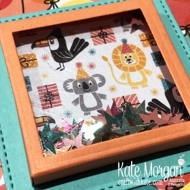 Shaker Card using Stampin Up Birthday Bonanza DSP & Birthday Goodness 2020 Mini by Kate Morgan, Australia closeup