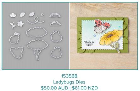 Ladybugs Dies