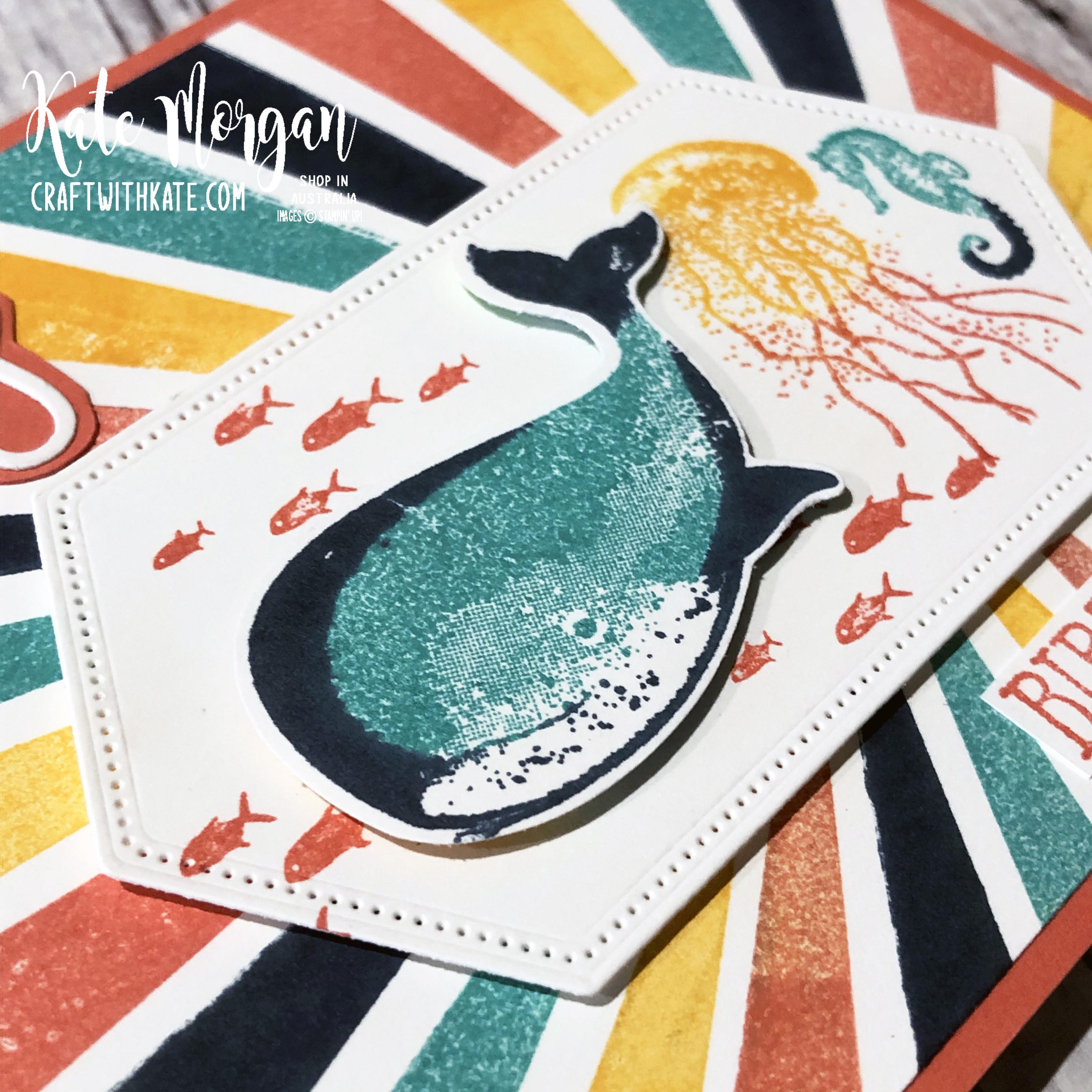 Calypso Coral CCS Card using Whale of a Time & High Tide stamps by Kate Morgan Stampin Up Australia 2020.