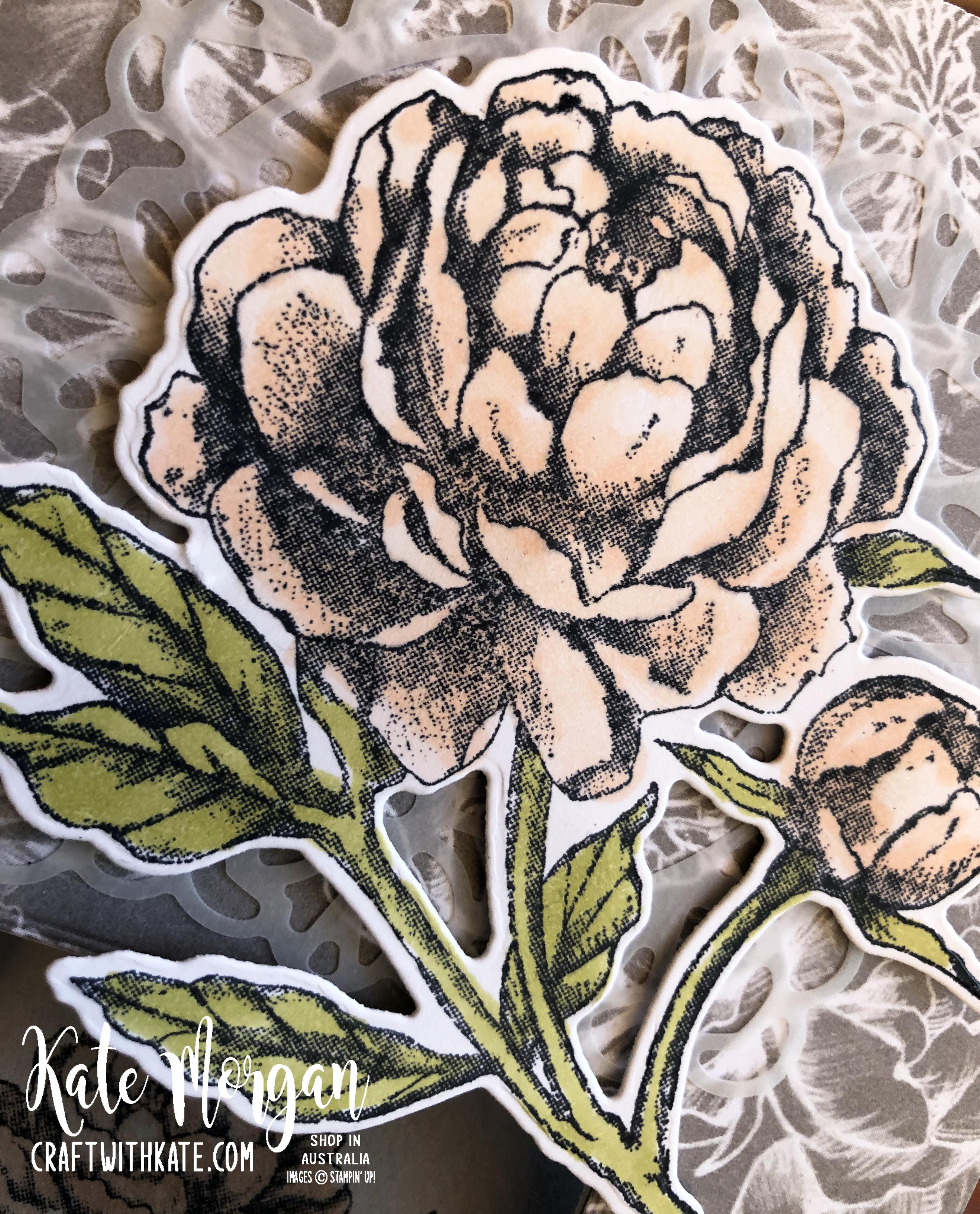 Peek a Boo Card using Stampin Up Prized Peony by Kate Morgan, Australia 2020 closeup