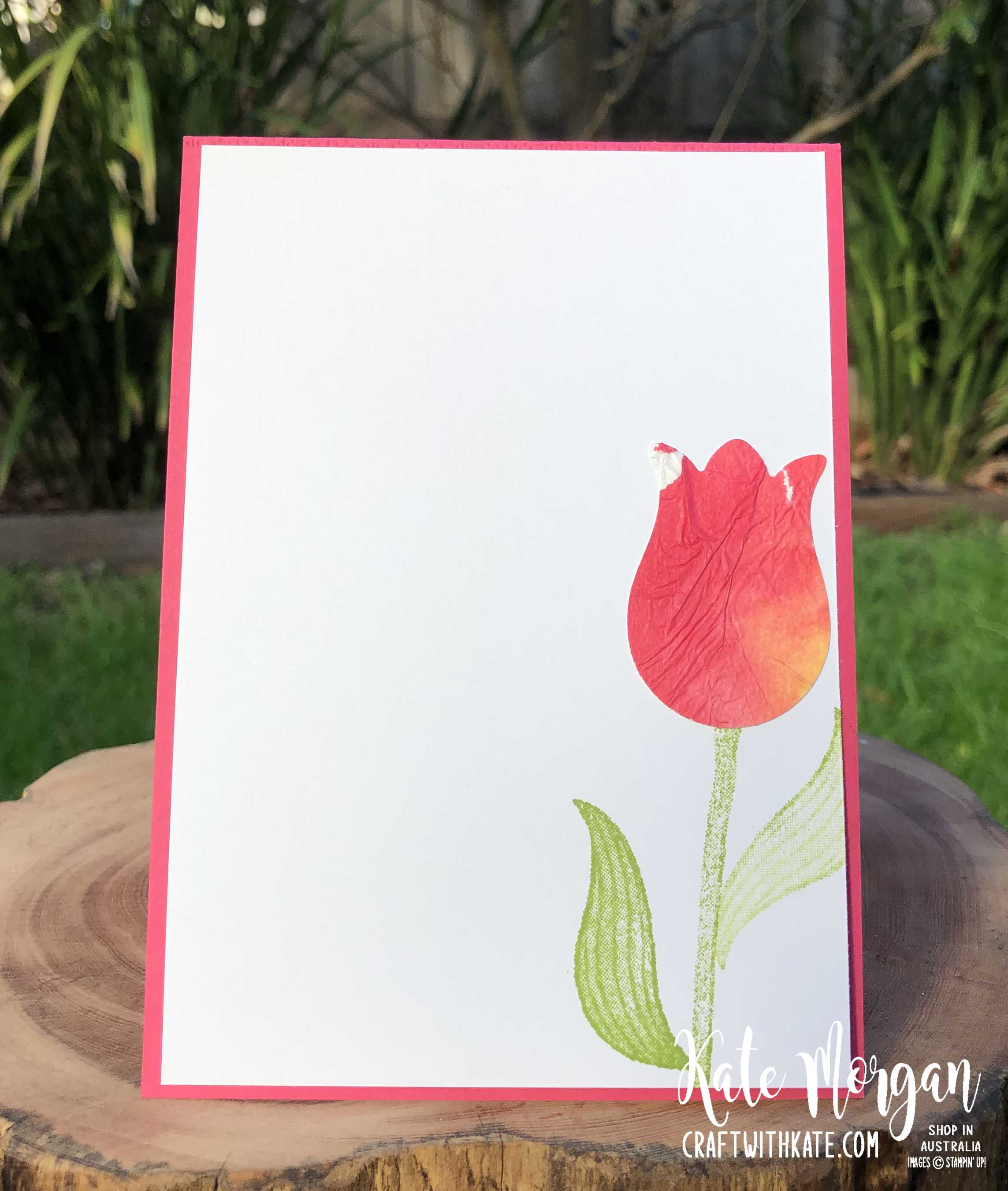 Timeless Tulips Tissue Paper Watercolour Technique by Kate Morgan Stampin Up Australia 2020 inside