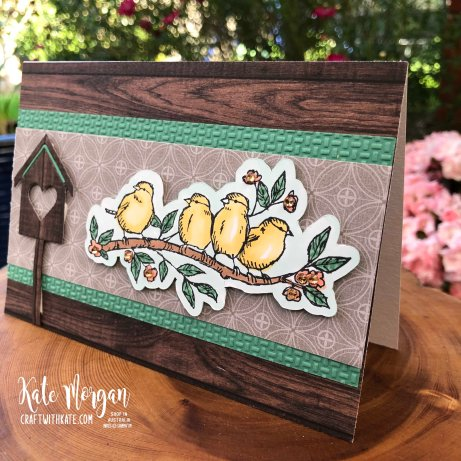 Colour Creations Showcase Just Jade using Stampin Up Free as a Bird by Kate Morgan, Australia 2020.