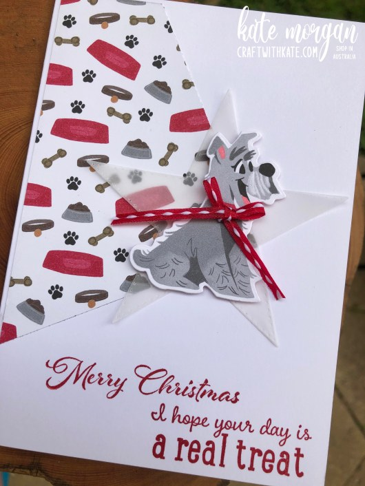 Pampered Pets for Christmas by Kate Morgan Stampin Up Australia 2020.