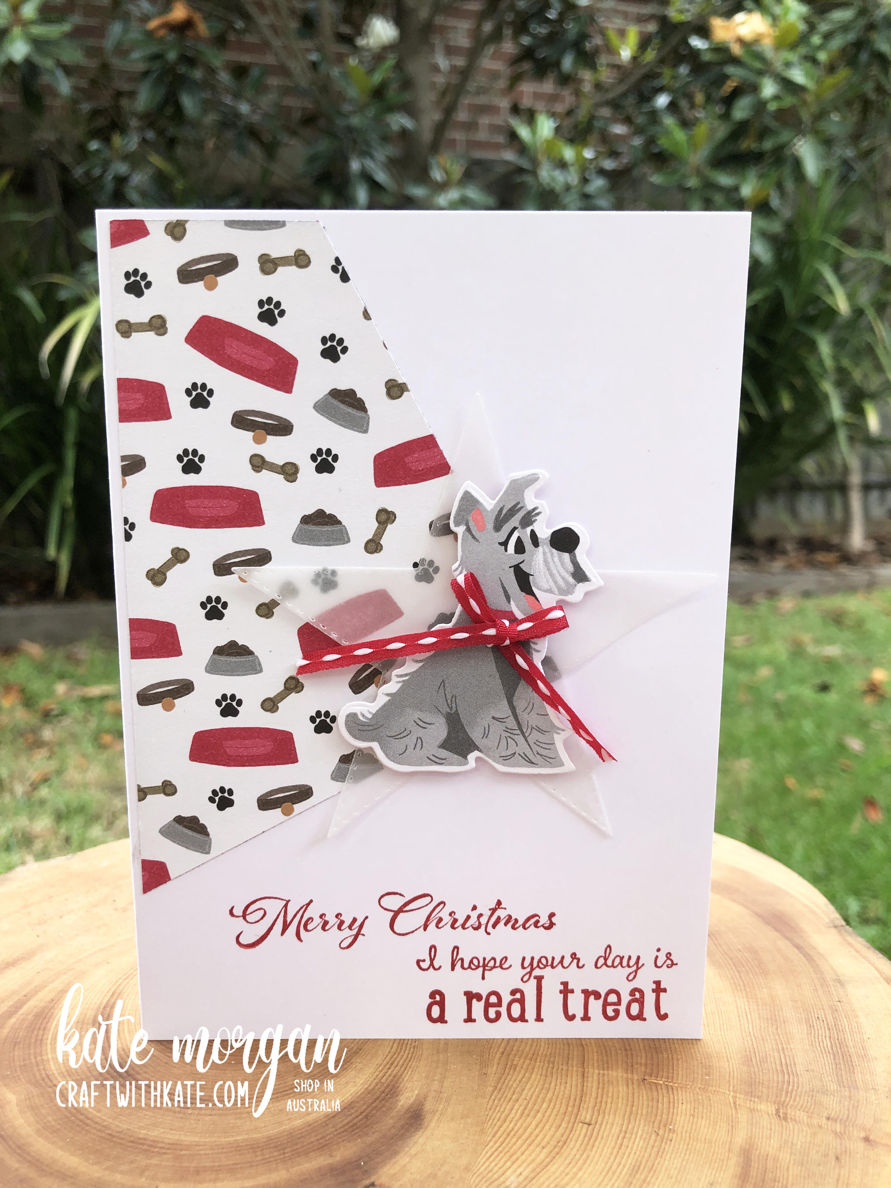 Pampered Pets for Christmas by Kate Morgan Stampin Up Australia 2020