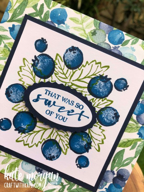 Berry Blessings Saleabration 2021 by Kate Morgan, Stampin Up Australia angle