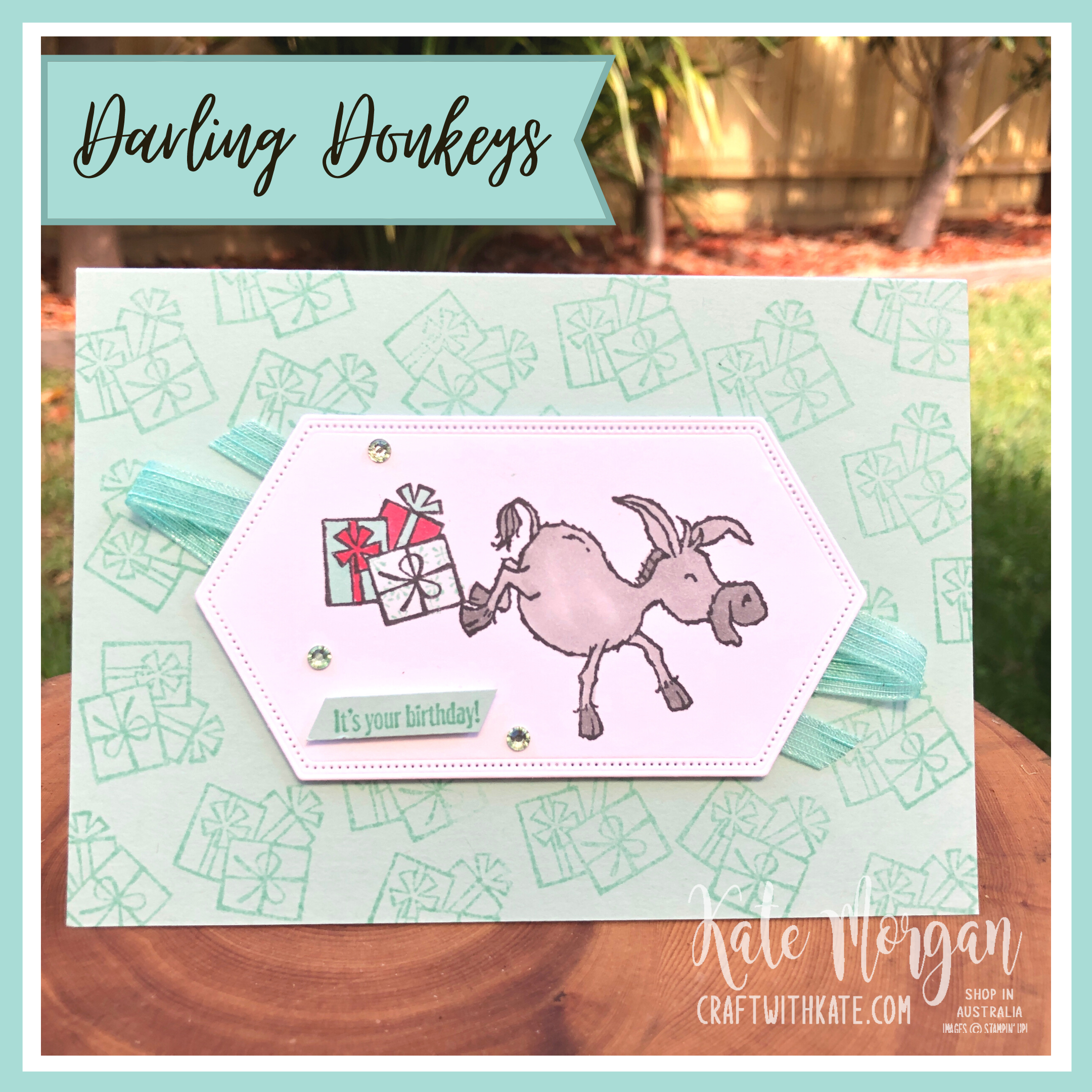 Darling Donkeys Birthday card for Pool Party Colour Creations Showcase by Kate Morgan, Stampin Up Australia 2021