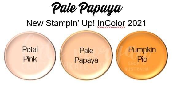Pale Papaya 2021-2023 InColor Stampin Up