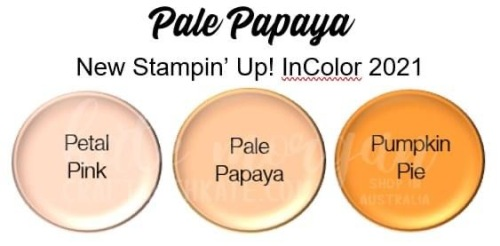 Pale Papaya 2021-2023 InColor Stampin Up