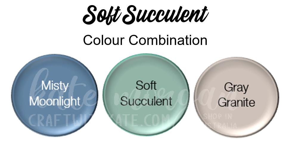 Soft Succulent Combination
