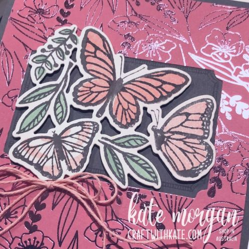 Floating & Fluttering Bundle Basic Gray CCBH 2021 by Kate Morgan Stampin Up Australia close